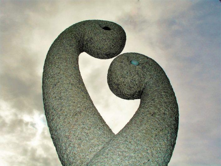 Figura cisnes